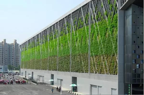 赞!上海原来有那么多世界第一!