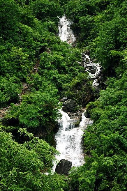 原始森林、泉水叮咚、谷深幽静,河南这9个绝美秘境最适合全家游,端午节带孩子走起