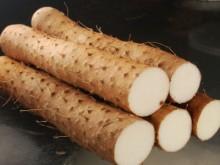山药的养生保健作用与饮食文化