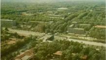 终于知道了,以前郑州为什么叫做绿城