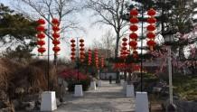 谁说城里年味儿淡?春节期间郑州100多场公园广场活动,嗨翻天!